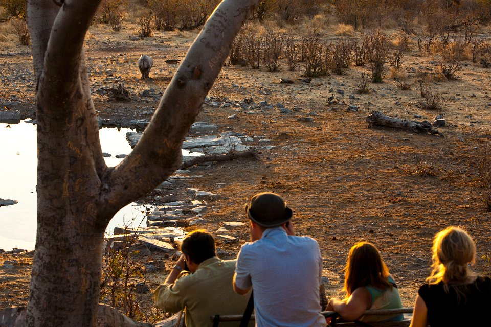 02-halali-camp 25 Incredible Places and Things to Do in Namibia and to see