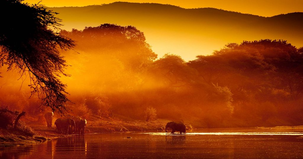 lower-zambezi-national-park-1024x539 30+ Amazing Places And Things to do In Zambia and things to see