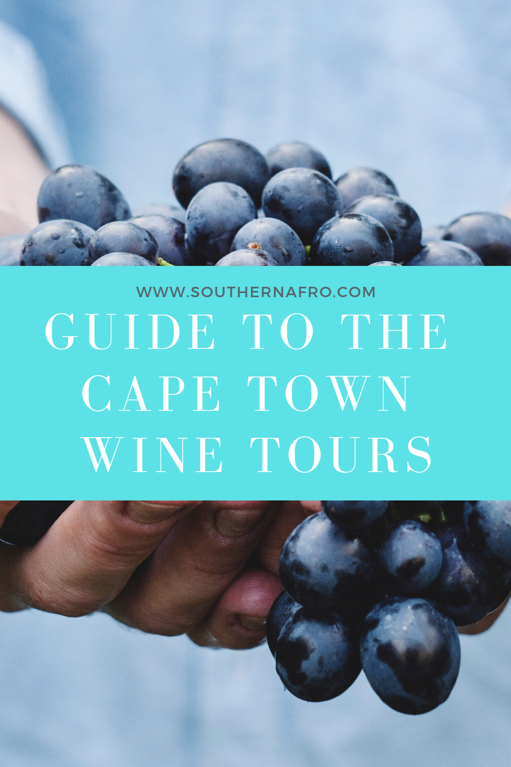 Guide to cape town wine tours