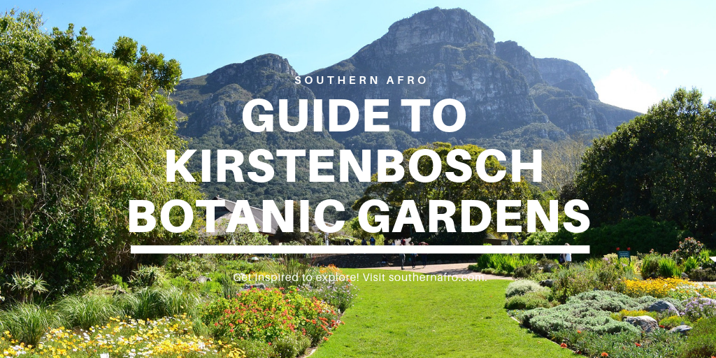 Guide To The Kirstenbosch​​ Botanic Gardens