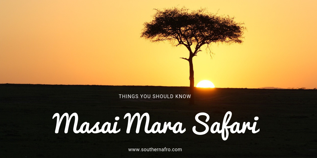 All About the Masai Mara Safari