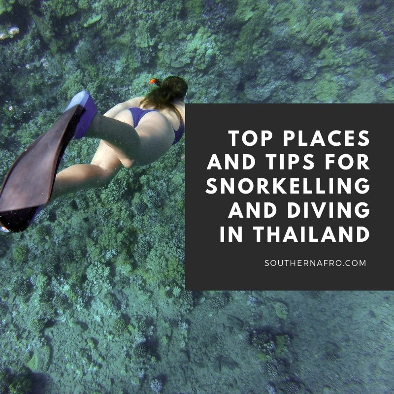 Top Places and Tips for Snorkelling and Diving in Thailand